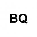 Тачскрины, сенсорные стекла для BQ