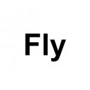 Тачскрины, сенсорные стекла для планшетов Fly