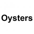 Тачскрины, сенсорные стекла для планшетов Oysters