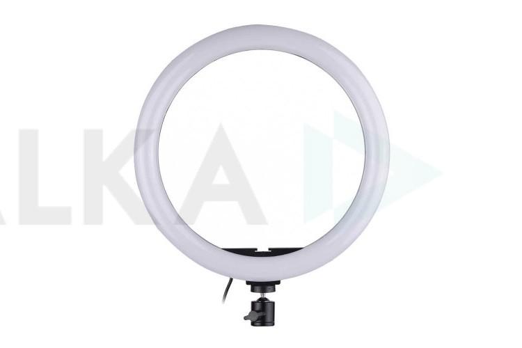 Кольцевая лампа напольная QX-260 (26 см) для фото и видеосъемки вариант 1 (без треноги)