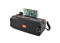 Fepe FP-22 р/п (USB,Bluetooth)